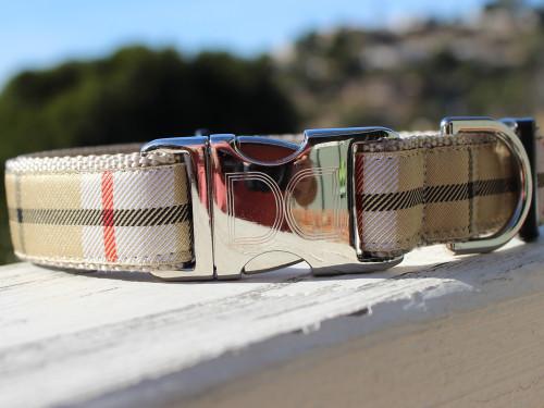 Barkley dog collar - by Diva-Dog.com