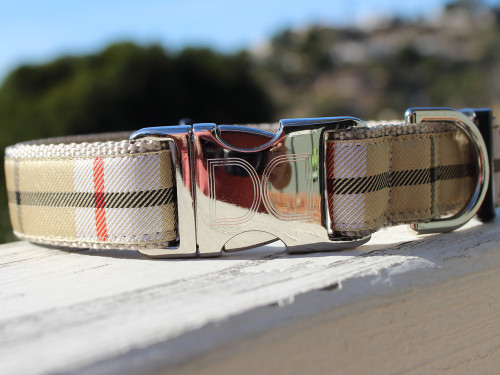 Barkley dog collar - by Diva-Dog.com