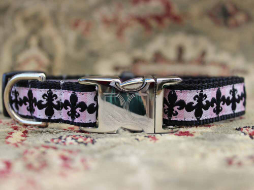 Katrina Dog Collar - by Diva-Dog.com