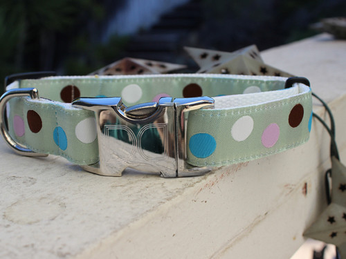 Metro Dog Collar - by Diva-Dog.com
