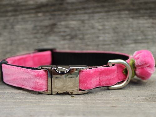 Rosebud Pink Velvet Dog Collar - by Diva-Dog.com