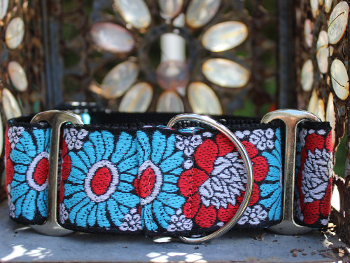 Hendrix martingale dog collar by www.diva-dog.com