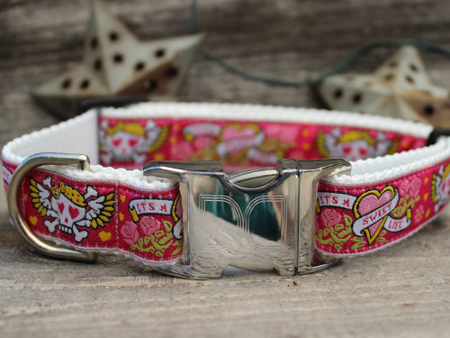 Wild One Pink Collar - by Diva-Dog.com