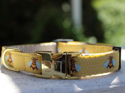 Honey Bee dog collar by www.diva-dog.com