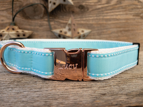 Preppy in Blue Dog Collar - by Diva-Dog.com