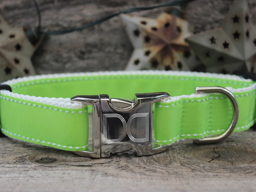 Preppy in Lime dog collar by Diva-Dog.com