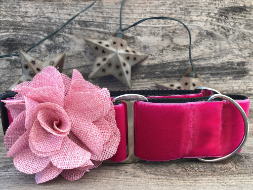 Christie pink velvet martingale dog collar by www.diva-dog.com