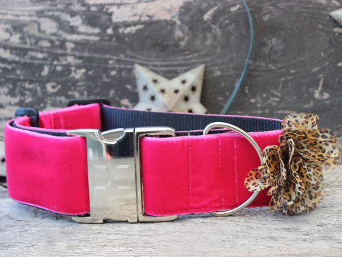 Pamela extra wide dog collar by www.diva-dog.com