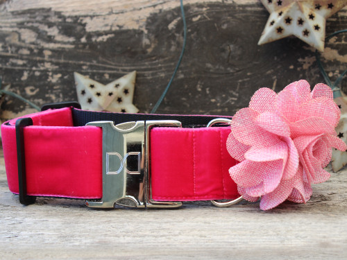 Christie extra wide dog collar www.diva-dog.com