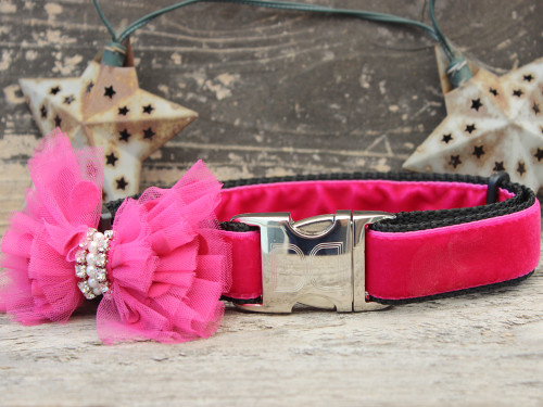 Bardot velvet dog collar by www.diva-dog.com