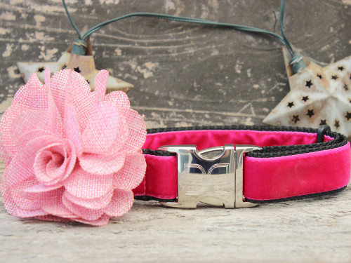 Christie pink velvet dog collar by www.diva-dog.com