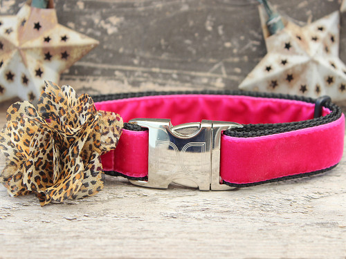 Pamela pink velvet dog collar by www.diva-dog.com