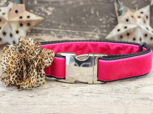 Pamela pink velvet dog collar by www.diva-dog.com