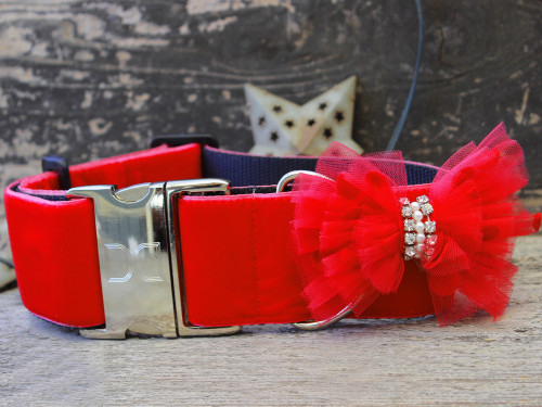 Mrs. Claws wide collar by www.diva-dog.com
