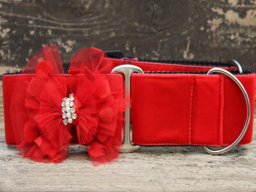 Mrs. Claws martingale dog collar by www.diva-dog.com