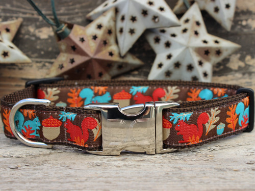 Squirrel! Dog collar by www.diva-dog.com