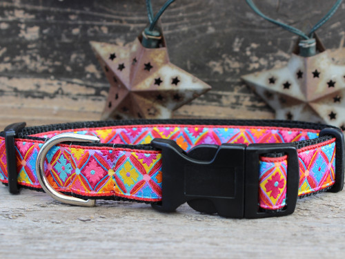 Bali Breeze Sport Buckle Dog Collar