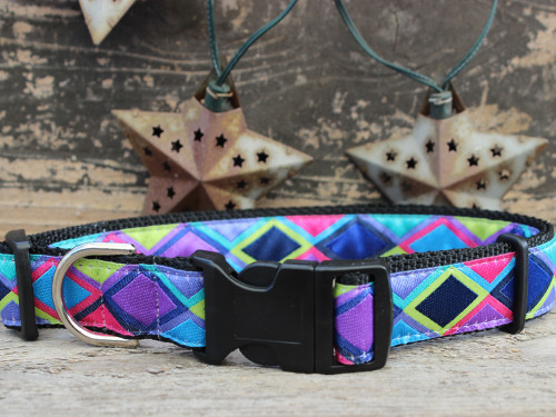 Tanzania sport buckle dog collar by www.diva-dog.com