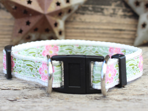 Maui dog collar with breakaway buckle by www.diva-dog.com
