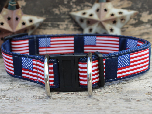 Stars n Stripes dog collar with breakaway safety buckle by www.diva-dog.com