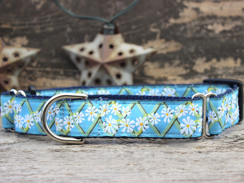 Daisy medium martingale dog collar by www.diva-dog.com