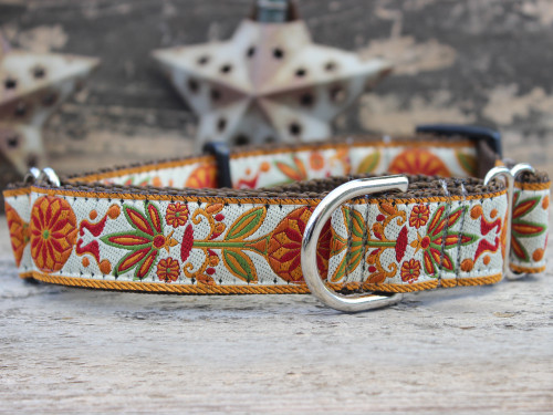 Venice Ivory medium martingale dog collar by www.diva-dog.com