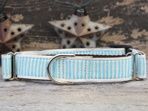 Beach Dunes medium martingale dog collar by www.diva-dog.com