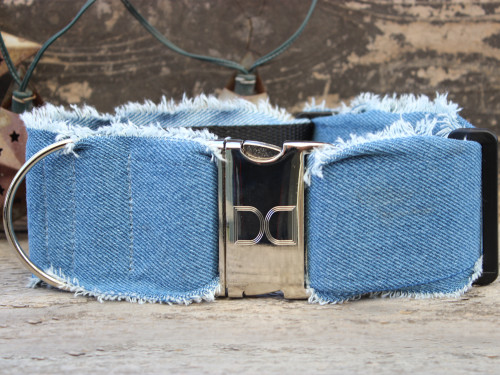 Blue Jean Baby extra wide dog collar by www.diva-dog.com