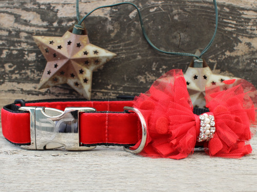 Mrs Claws dog collar by www.diva-dog.com