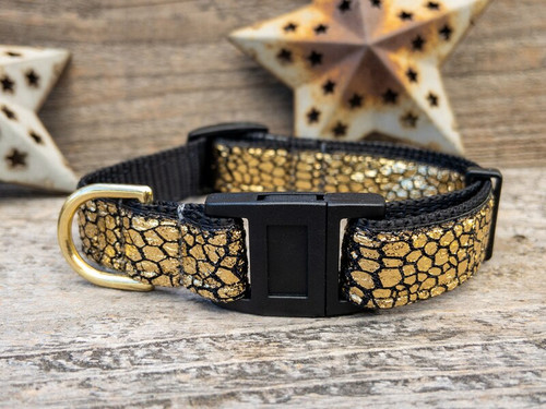 Monty Metallic 24 karat gold cat collar by www.diva-dog.com