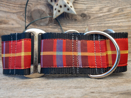 Vixen wide martingale dog collar by www.diva-dog.com