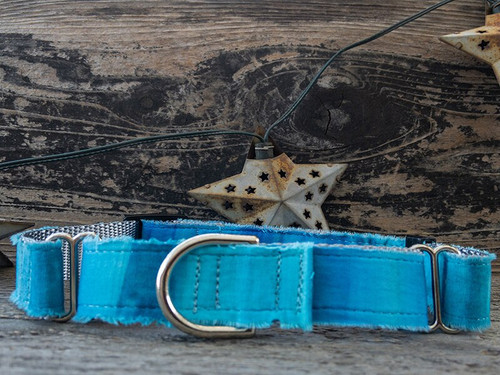 Bahama Blues martingale dog collar by www.diva-dog.com