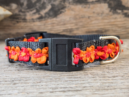 Coco Madrid cat collar by surf cat