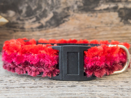 Cabo Sunset Red cat collar by Surf Cat and www.diva-dog.com
