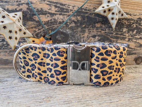Bad Kitty extra wide dog collar by www.diva-dog.com