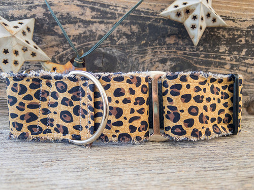 Bad Kitty wide martingale by www.diva-dog.com