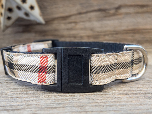 Caterly cat collars by Diva Dog and Surf Cat