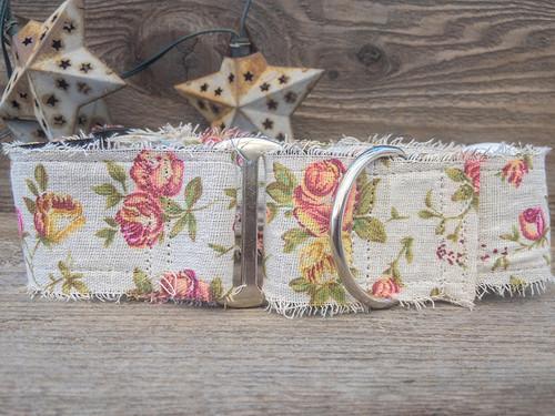 Teagarden martingale by www.diva-dog.com