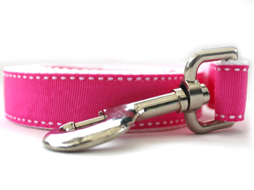 Preppy Pink Dog Leash - by Diva-Dog.com