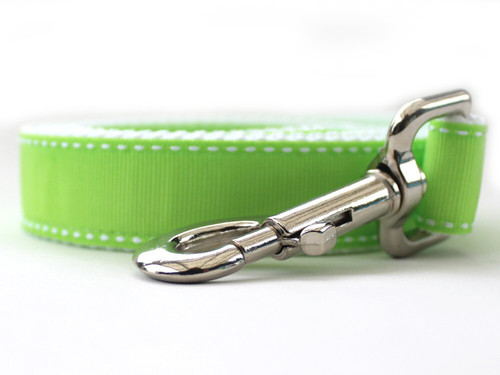 Preppy in Lime Dog Leash