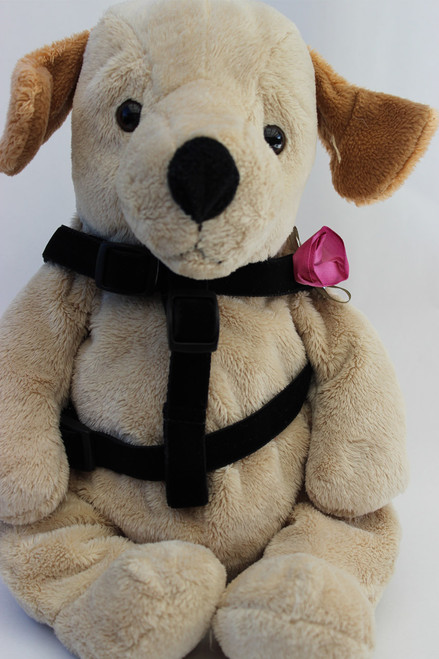 Carnation orchid step-in Harness - by Diva-Dog.com  - front view