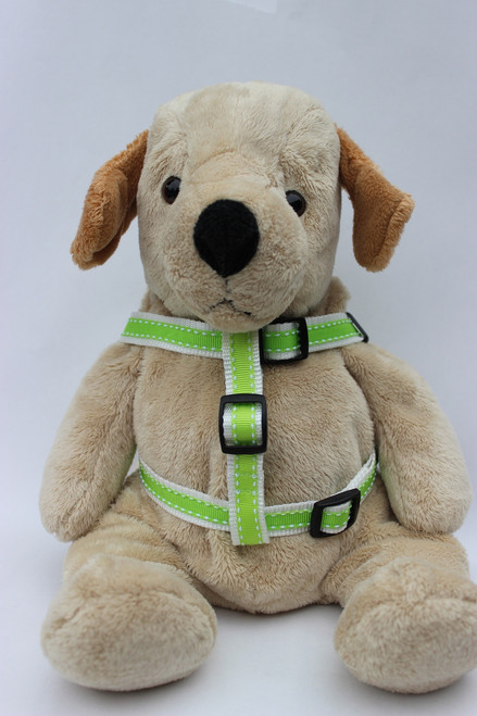 Preppy in Lime Step-In Harness - by Diva-Dog.com  - Front View