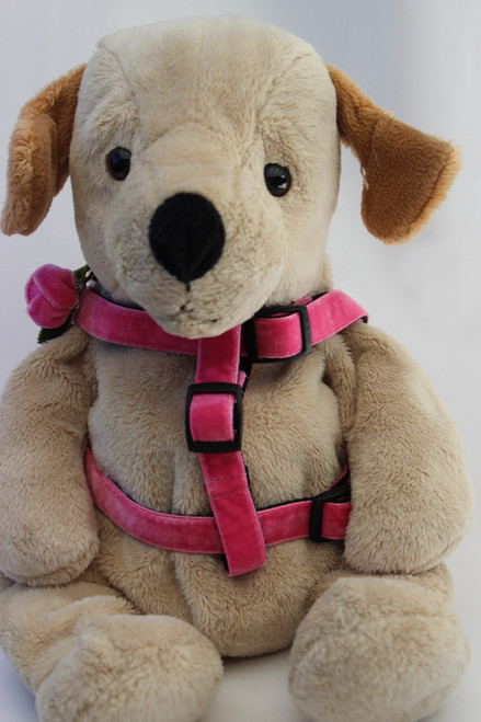 Rosebud step in Harness - by Diva-Dog.com  - front view