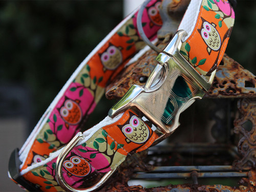 H'Owl Dog Collar - by Diva-Dog.com in Pumpkin and Pink color combo.