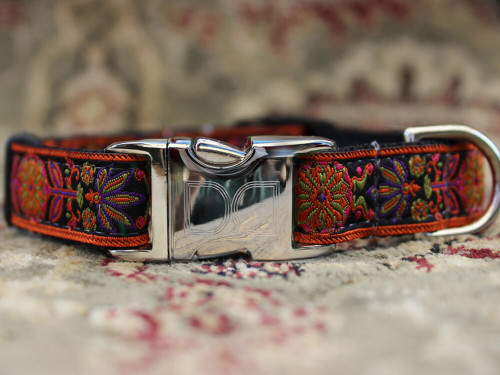 Venice ink dog Collar - by Diva-Dog.com