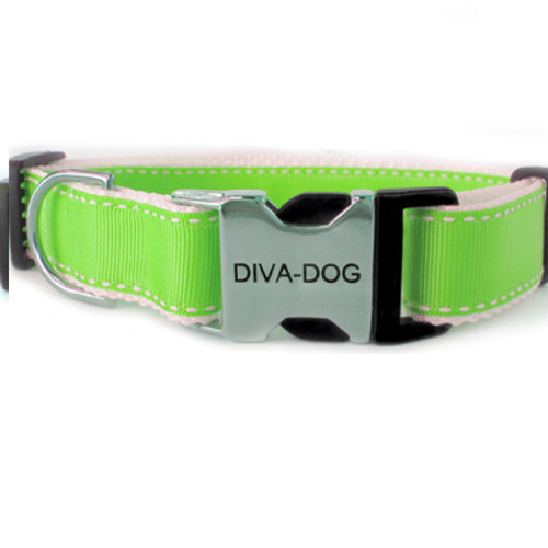 Preppy in Lime clearance collar