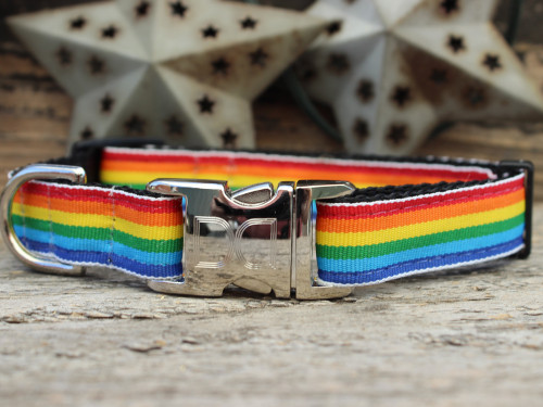 Rainbow dog Collar - by Diva-Dog.com