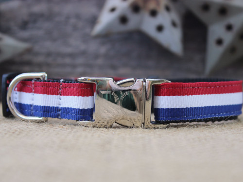 Patriotic Pooch Collar - by Diva-Dog.com