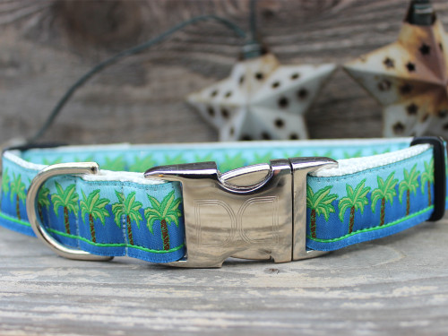 South Beach Dog Collar - by Diva-Dog.com