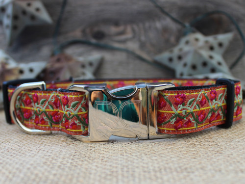 Bombay Dog Collar - by Diva-Dog.com